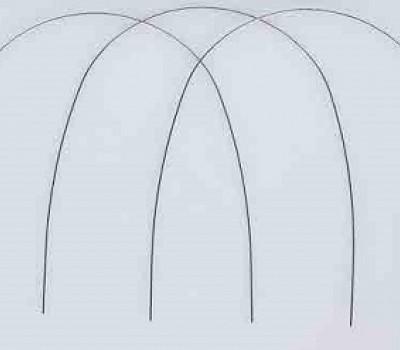 Archi di Allineamento Orthonol<SUP>®</SUP> Natural SWLF<SUP>®</SUP> in Nichel-Titanio - RMO<SUP>®</SUP>